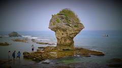 flower vase rock, Liquiu Island小琉球花瓶岩 (My View, My Life) Tags: rock reef flower flowervase liquiu sea 小琉球 花瓶岩 海邊 summer swimming 浮潛 海龜 潮間帶 珊瑚礁 東港 屏東