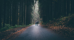 You'll never walk alone... (sfp - sebastian fischer photography) Tags: mudau odenwald olfen twinturbo hesseneck wald forest portrait portraiture twins cinematic road strase pfad strasse waldweg waldstrase countryroad path together walk human element humanelement