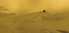 Across A Golden Sea (buddah1888) Tags: canon60d canon 70200 golden sea trawler tighnabruaich westcoast wake rippled waves holiday nationalviewpoint journey loch scotland unborn vividandstriking vibrant vista