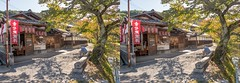 Kyoto, Japan (NobitaN) Tags: stereography 3d japan parallel