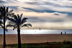Blow wind blow. (explored 2016/11/20) (Fnikos) Tags: light sea water waterfront beach shore sky skyline cloud boat sailboat people nature palmtree outdoor