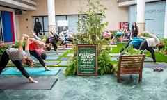 BC Lung Yoga-43 (bdshaler) Tags: bclungassociation bclung takeabreather yoga lululemon