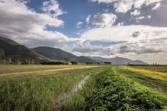 Der Weg nach Calci (www.politik-sind-wir.de) Tags: calci pisa toskana montepisano tuscany felder bege wolken outdoor wanderung