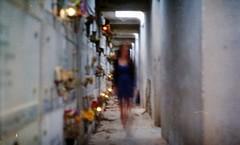 (Victoria Yarlikova) Tags: 35mm film analog scan smallformat iso100 zenit cemetery long exposure pellicola retro vintage eerie darkroom spooky
