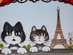 Colors of Paris (brigraff) Tags: chat cat katze gato paris toureiffel tour eiffel eiffeltower tower brigraff