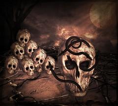 hilarum festum! (Swissrock-II) Tags: challenge dark skull totenkopf photoshop photoart digitalart photomanipulation december 2016 light lightroom pixlr surreal