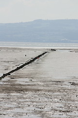 West Kirby (daveandlyn1) Tags: westkirby thewirral deeestuary pipeline beach loxtide muddyestuary f456is efs55250mm canoneos450d niftytwofifty wales