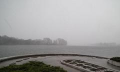 ...spring weather (mariuszj8) Tags: trees lake snow water rain weather clouds spring gulls poland malta poznań jezioro