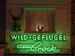Wild-Geflgel, Kln (Guy Gorek) Tags: wild night germany deutschland neon nightshot cologne kln gustav brock nrw neonsign werbung reklame nach nachtfotografie geflgel neonreklame leuchtreklame mygearandme