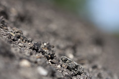 Dirt-e (Djenzen) Tags: road canon jeroen dirt jansen weg zand 40d djenzen