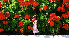Flower Power (tunibug) Tags: flowers sorry for photo many spam gorgeous disney compass dt ops so travelingblythe