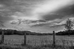 Of fence and clouds # De clture et de nuages (Chizuka2010) Tags: blackandwhite bw monochrome clouds rural fence countryside noiretblanc nb nuages campagne canoneos cloudysky fencepost clture nuageux ruralscene cielnuageux canoneos60d fencephotography ruralqubec fencefriday chizuka2010 luciegagnon