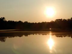 Lake Nummy (Christine_Ray) Tags: new pine forest state reserve national jersey pinelands barrens belleplain belleplaincapemayandparvin capemayandparvin