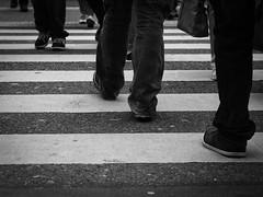 Vertikal, Horizontal, Diagonal (kohlmann.sascha) Tags: street people blackandwhite bw blancoynegro monochrome bag de deutschland shoe clothing shoes dress traffic legs noiretblanc linie leg streetphotography bein technik case menschen line clothes purse footwear monochrom pocket schwarzweiss wuppertal technique handbag verkehr zebrastreifen schuhe nordrheinwestfalen biancoenero beine schuh mensch kleidung tasche anatomie linien handtasche bekleidung footgear schwarzweis schwarzwei schuhwerk transportequipment streetfotografie strasenfotografie straenfotografie wuppertalapril2013 transporthilfsmittel ilobsterit