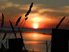 Sunset In France - Bretagne