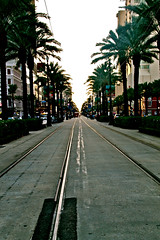 (Sarah A. Murray) Tags: street new sunset tree beautiful orleans neworleans palmtrees nola 2013