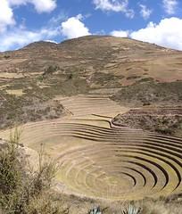 Moray (Fernando Bryan Frizzarin) Tags: peru inca cusco laboratory laboratorio moray agricultural agricultura