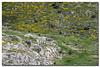 _JRR2843 (JR Regaldie Photo) Tags: mountain snow rocks nieve lagunas sierrademadrid peñalara jrregaldiephoto