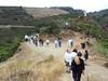 Viñedos de Ribeira Sacra (Lugo)