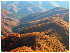 La fort d'Iraty - Pyrnes basques - France/Espagne (Dmocrite, atomiste drout) Tags: automne fort pyrnes iraty