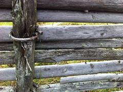IMG_1773 (Blue Sphinx) Tags: wood fence sweden lichen sverige lav staket trä gärdesgård