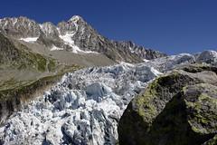 Massif du Mont-Blanc, glacier d'Argentire (Ytierny) Tags: france montagne front glacier paysage chamonix glace alpinisme hautesavoie sommet aiguille argentire chardonnet srac massifdumontblanc alpesdunord paysagealpin ytierny