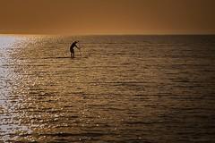 Alone (szatkowski.gary) Tags: ocean water lakemichigan