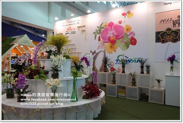 고양국제꽃박람회025