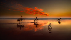 Chair and riders (Mariano Belmar Torrecilla) Tags: spain alicante torrevieja