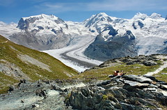 der Gletscher ist als ein Fluss (welenna) Tags: alpen alps switzerland snow summer schwitzerland schnee sky swiss stone berge blue mountains mountain view landscape light relief gletscher eis