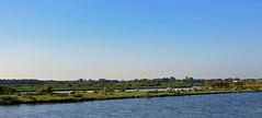 Je schaapjes op het droge hebben. (Peter ( phonepics only) Eijkman) Tags: zaanstreekwaterland waterland water nederland netherlands nederlandse noordholland holland
