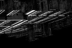 DSC_0486 (sonicgabe2010) Tags: stpetersburg florida wreckingball blackandwhite jensandwich streetphotography totaltrash