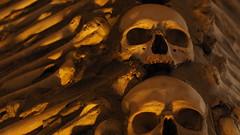 All van los seoros (D. Moreno) Tags: skull crypt calavera cripta huesos bones evora