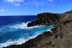 Hawaii Seascape - Blowhole Cliffs (Wilson Hui) Tags: seascape ocean pacificocean blowhole halona hawaii cliffs blue bluewaters windward pretty paradise deepbluesea shadesofblue sooc sunny16 sunny lightscatteredclouds