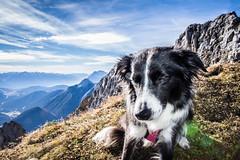 Karwendel_9927.jpg (Comperia) Tags: bege berg karwendel landschaft wandern