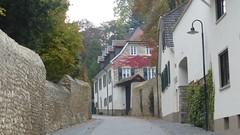Selztal, Ingelheim: Weingut Wasem