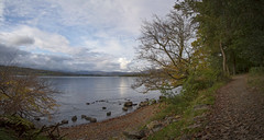 A walk by the lake on an autumn afternoon (felixspencerhdr) Tags: lakewindermere lake walk autumn beautiful trees tree landscape lakedistrict light path