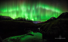 Virgin creek, AK (Traylor Photography) Tags: grass night northernlights landscape travelphotography nature mountains alyeska panorama snow solarstorm auroraborealis colors girdwood sewardhighway alaska anchorage tall unitedstates us