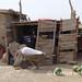 Gonur Depe: wheelbarrow and watermelon
