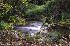 ro Palancia en Bejs (tonomf) Tags: ro bejs altopalancia atardecer naturaleza paisaje nikon nikond5100 bosque