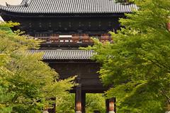The Great Gate (Tim Ravenscroft) Tags: gate sanmon nanzenji buddhist kyoto higashiyama japan foliage trees