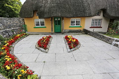 (Martin_Francis) Tags: adare ireland colimerick thatchroof