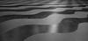 Undulating (anakiwa_forever) Tags: 1162016 lowerhutt wellington dowse newzealand