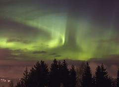 Last nights light show (MargitHylland) Tags: nordlys nordlicht northern lights gjvik oppland norwegen norway norge