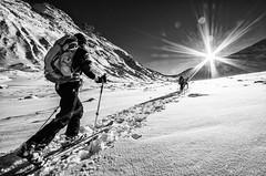 Similaun - 11/2016 (labusak) Tags: similaun alps ski oetztal martin busch hutte skitouring austria vent italy glacier snow winter touring adventure