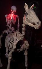 Night Rider (UnsignedZero) Tags: california celebrationevent in indoor indoors inside item mareisland nightmareisland object solanocounty vallejo