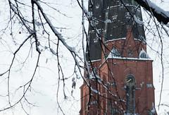 Analogt urverk (asahele) Tags: uppsala domkyrka torn grenar urverk klocka analog fotosondag fs161113 vinter