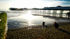 Low tide, Brighton beach, Brighton, England (michaelasss) Tags: brighton southcoast sussex england pier beach lowtide sand paddling baby mum sunset water ocean moss wall breakwater pebbles