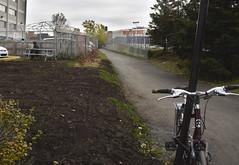 montral entre Home Depot et Canadian tire (danile godard-livet) Tags: montral vlo hommedepot pelouse djeuner