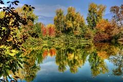 Oasi (giannipiras555) Tags: oasi riflessi autunno
